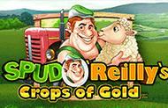 Играть на деньги в Золотой Урожай Спада О'Райли